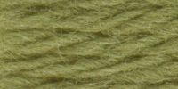 Beverley Tapestry Wool Hank: Pale Sage (Shade 02979)