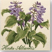 Elizabeth Bradley: Hosta Atlantis Tapestry Kit